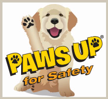 Paws Up for Safety