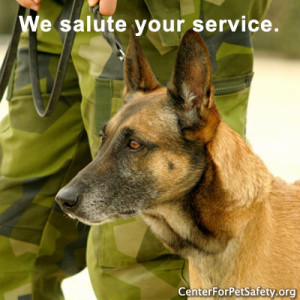 051815-military_dog-text