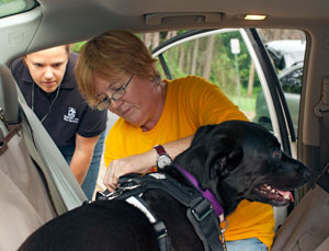 Ease of use study with Fairfax Pets on Wheels