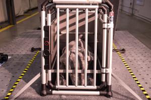 2015 Crate Crashworthiness Study