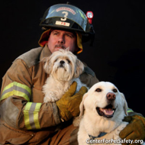 National Pet Fire Safety Day is July 15, 2015