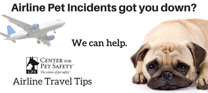 Airline-Pet-Incidents